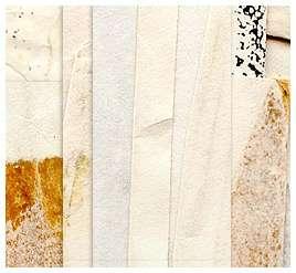 Download  Paper Texture Set